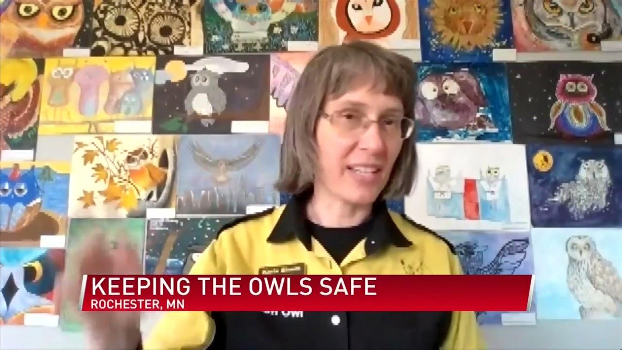 owls kaalulangus kuidas eemaldada kohurasva kiiresti